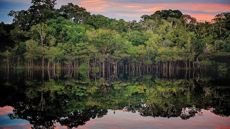 Aventuras na História · Amazônia Antiga: Uma floresta culturalmente intensa