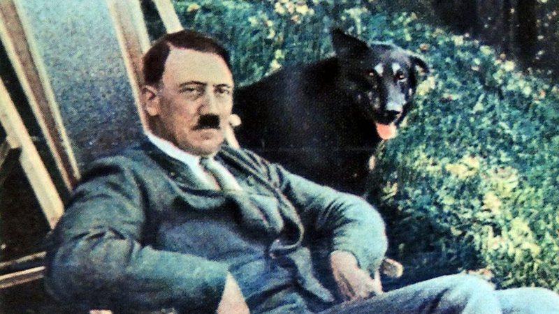 Jardim de Hitler é encontrado na Polônia - Aventuras na História