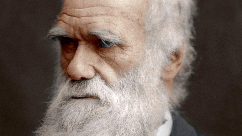 Resultado de imagem para charles darwin