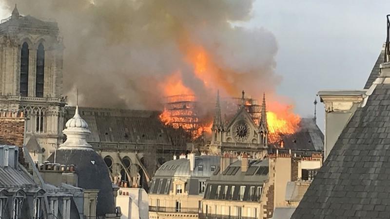 Catedral de Notre-Dama pega fogo em Paris