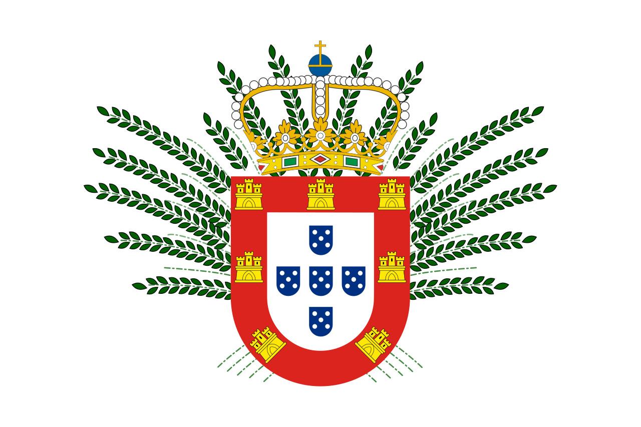 A Primeira Bandeira Do Brasil Republica aventuras na história · essa foi a bandeira do brasil