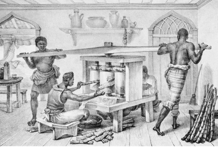 Escravos moendo cana-deaçúcar