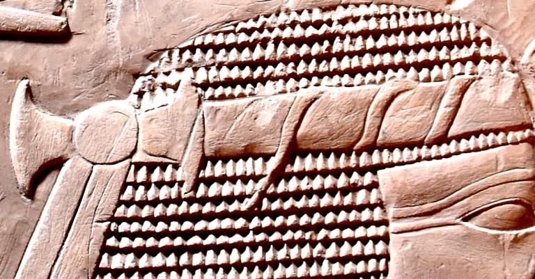 O fragmento identificado