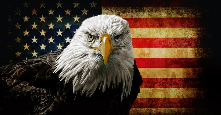 A águia de cabeça branca, ave-símbolo dos EUAv