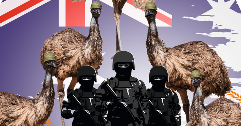 Austráçia X Emus