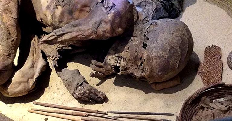 A múmia usada no estudo