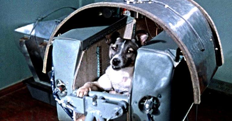 Laika estava a bordo da nave Sputnik 2