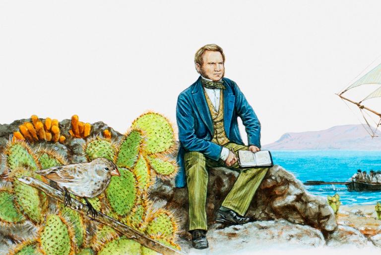 Ilustração de Darwin na Ilha de Galápagos